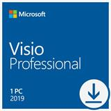 Microsoft_Visio Professional 2019 - All Languages ESD